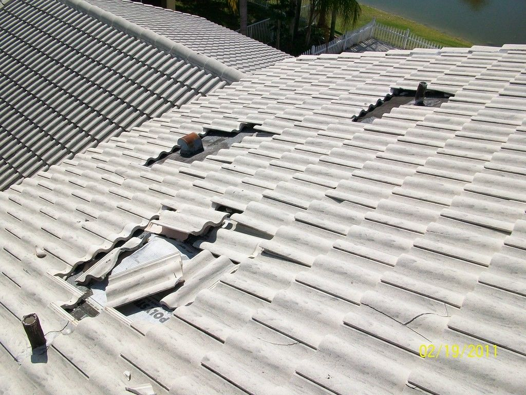 Roofing Companies Near Me in Wellington, CO